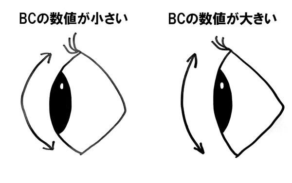 ベースカーブの比較